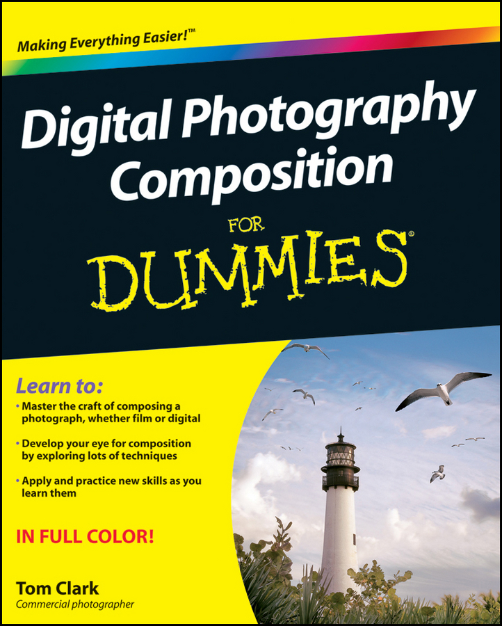 Thomas Clark Digital Photography Composition For Dummies effect of composition in as cast and homogenized al si cu alloys