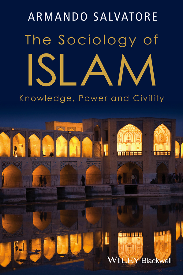 Armando Salvatore The Sociology of Islam. Knowledge, Power and Civility tamara sonn islam a brief history isbn 9781444317848