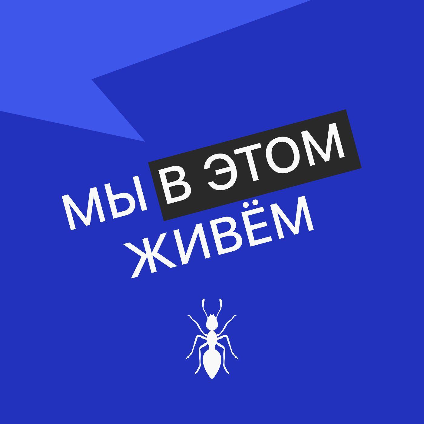 Выпуск № 21 сезон 2  В поисках королевы яблок