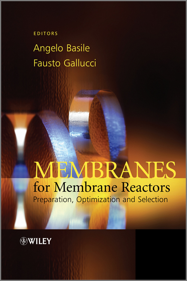 Gallucci Fausto Membranes for Membrane Reactors. Preparation, Optimization and Selection жакет mango kids жакет