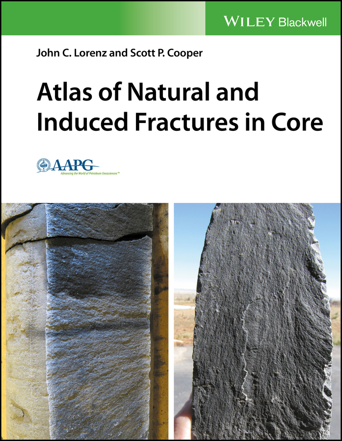 Scott Cooper P. Atlas of Natural and Induced Fractures in Core