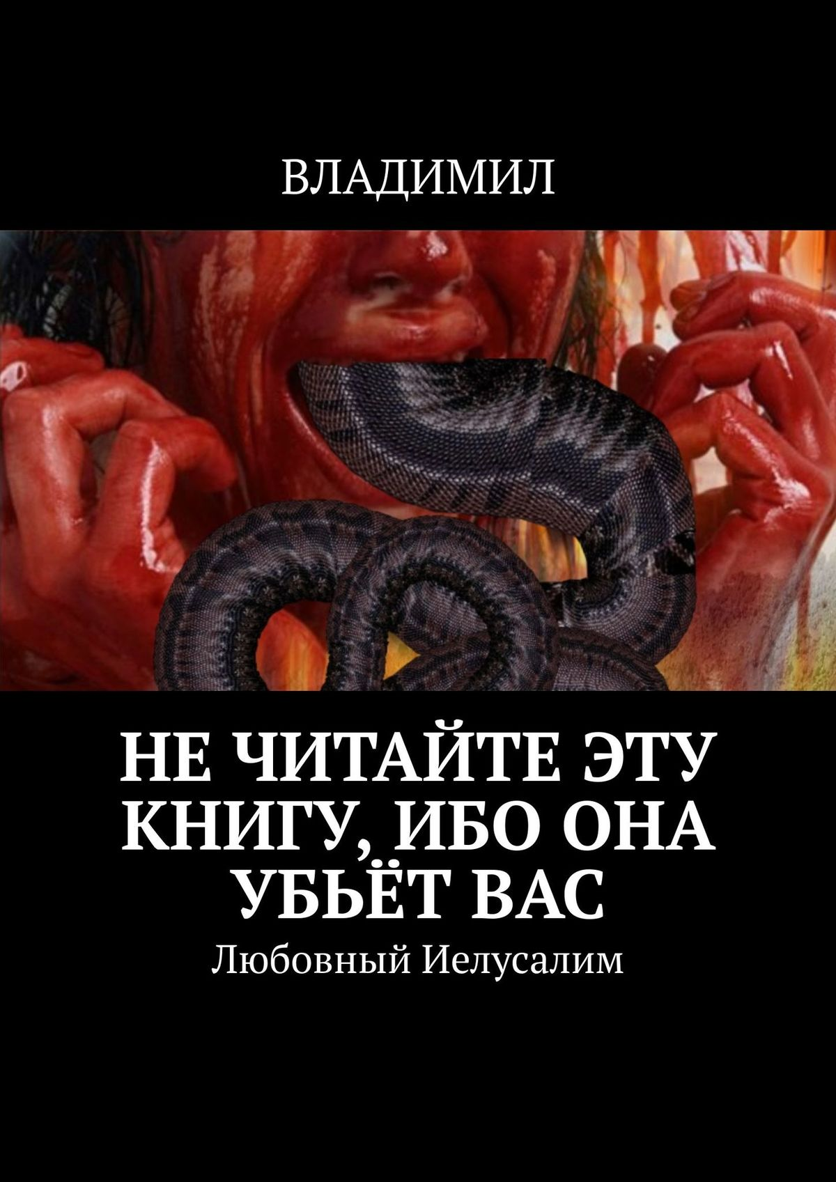 ВЛАДИМИЛ Нечитайте эту книгу, ибо она убьётвас. Любовный Иелусалим