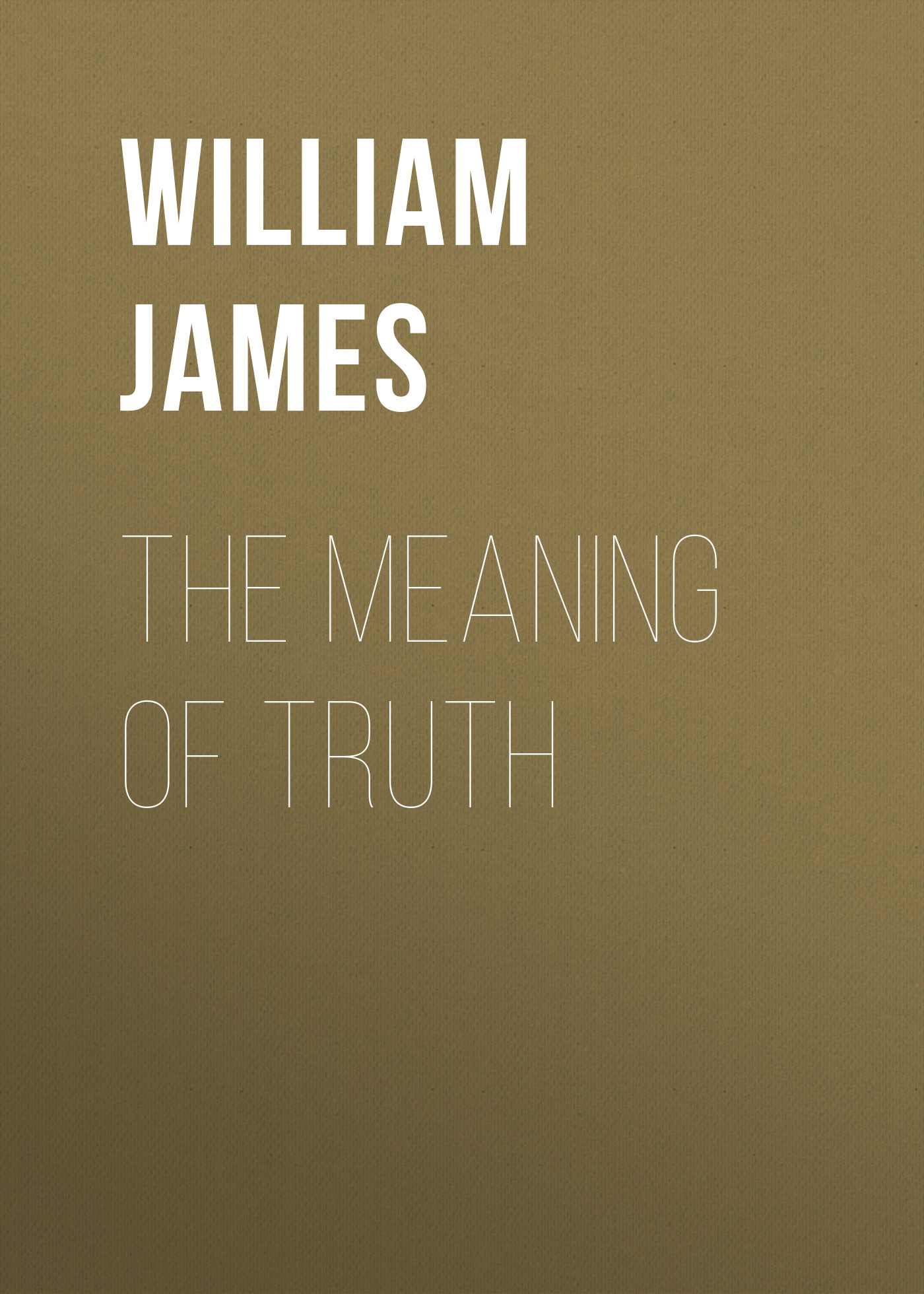 William James The Meaning of Truth the meaning of rice
