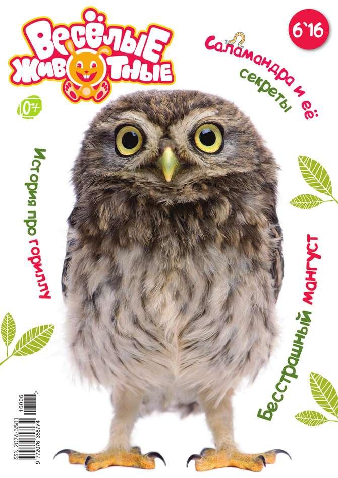 Редакция журнала Веселые Животные Веселые Животные 06-2016 журнал животные леса 43