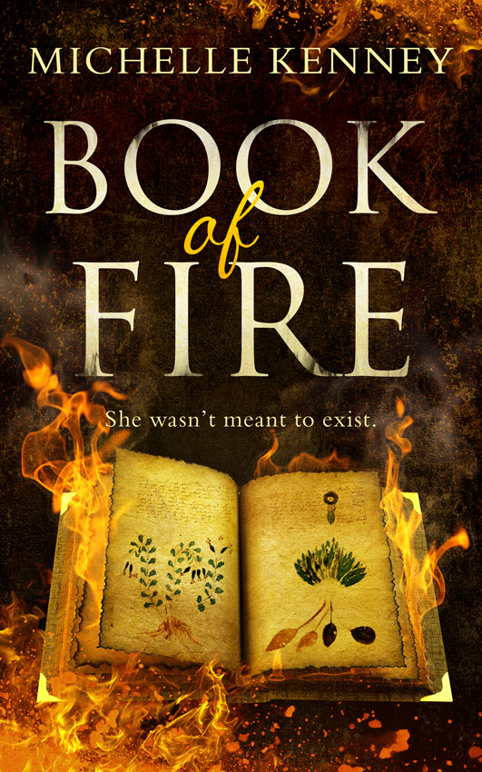Michelle Kenney Book of Fire: a debut fantasy perfect for fans of The Hunger Games, Divergent and The Maze Runner michelle celmer out of sight