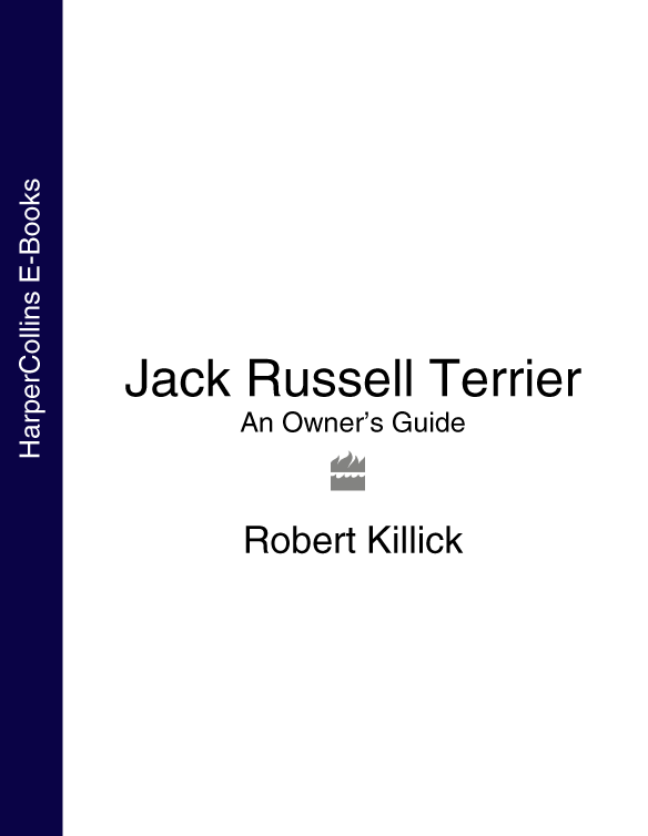 Robert Killick Jack Russell Terrier: An Owner's Guide jack russell malletier аксессуар для техники