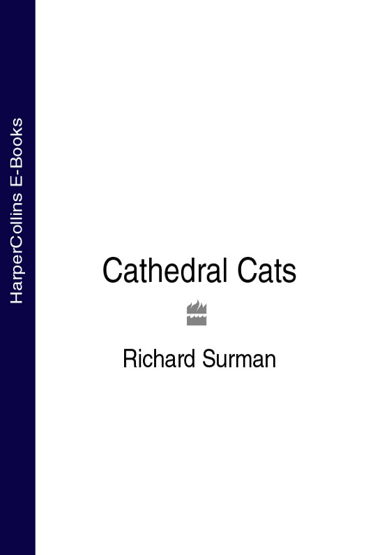 Richard Surman Cathedral Cats cathedral