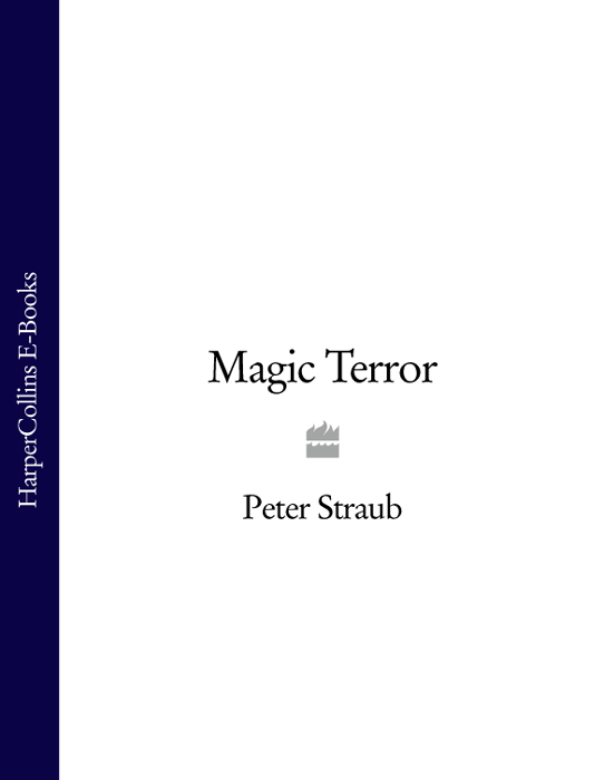 Peter Straub Magic Terror peter straub in the night room