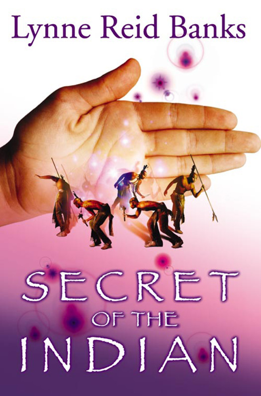 Lynne Banks Reid Secret of the Indian