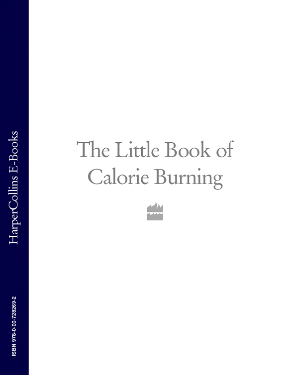 Коллектив авторов The Little Book of Calorie Burning cross and burn