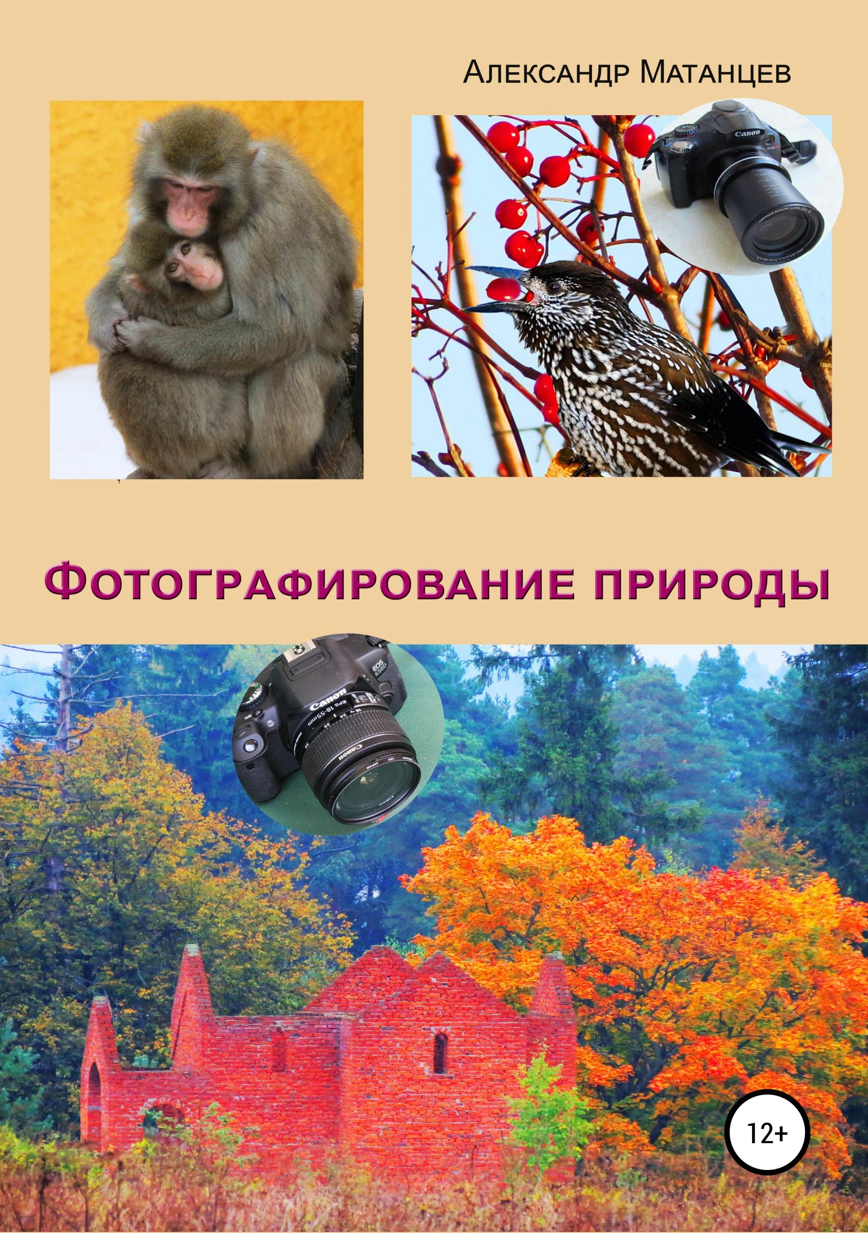 Фото - Александр Матанцев Фотографирование природы сотовые телефоны