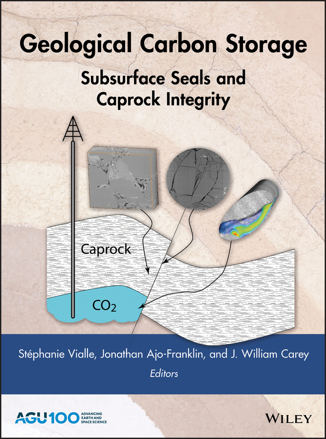 Jonathan Ajo-Franklin Geological Carbon Storage. Subsurface Seals and Caprock Integrity все цены