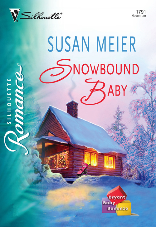 SUSAN MEIER Snowbound Baby biscuit takes a walk my first i can read