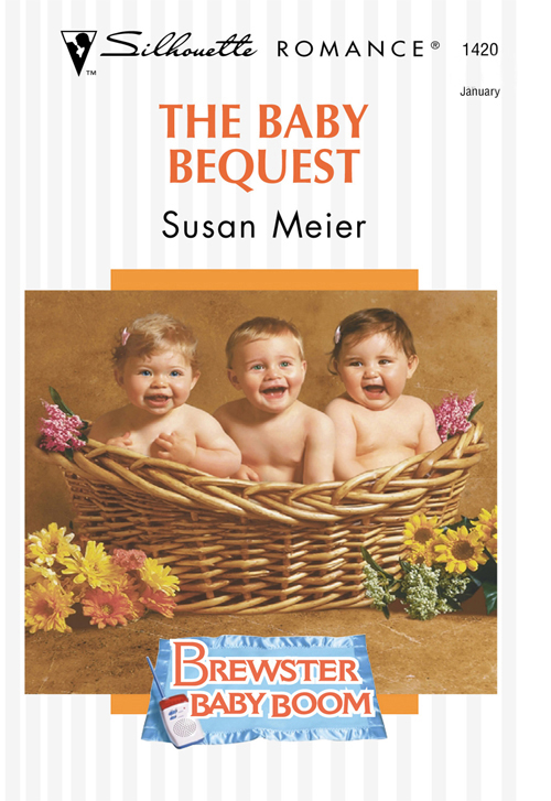 SUSAN MEIER The Baby Bequest susan meier snowbound baby
