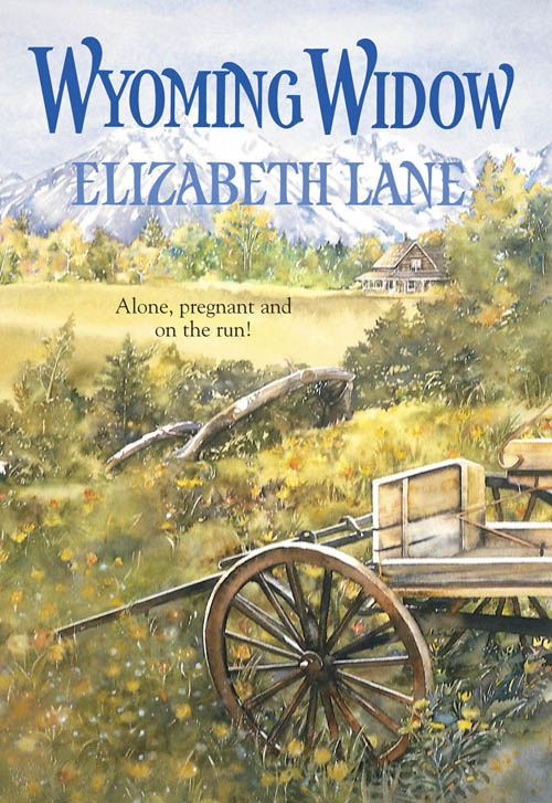 Elizabeth Lane Wyoming Widow