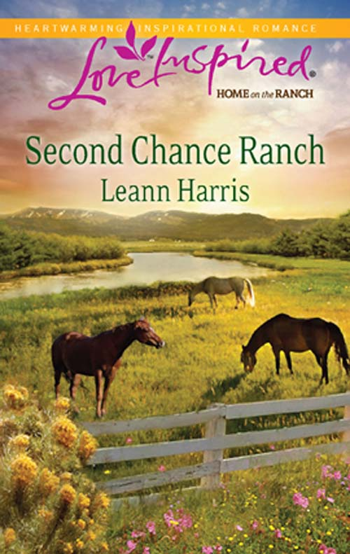 Leann Harris Second Chance Ranch michael burchell no excuses how you can turn any workplace into a great one