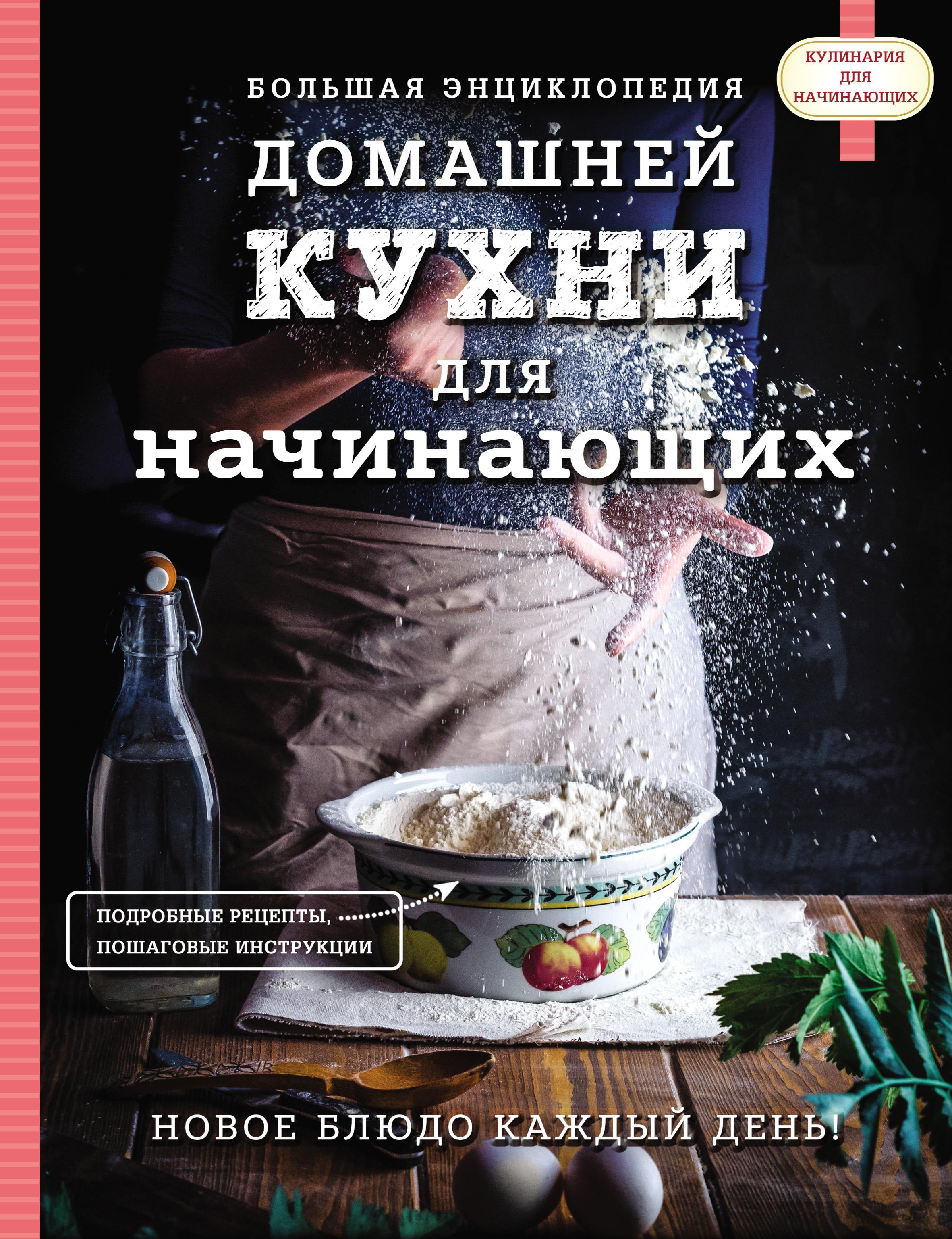 Отсутствует Большая энциклопедия домашней кухни для начинающих вардан кюрегян для тех кто спешит