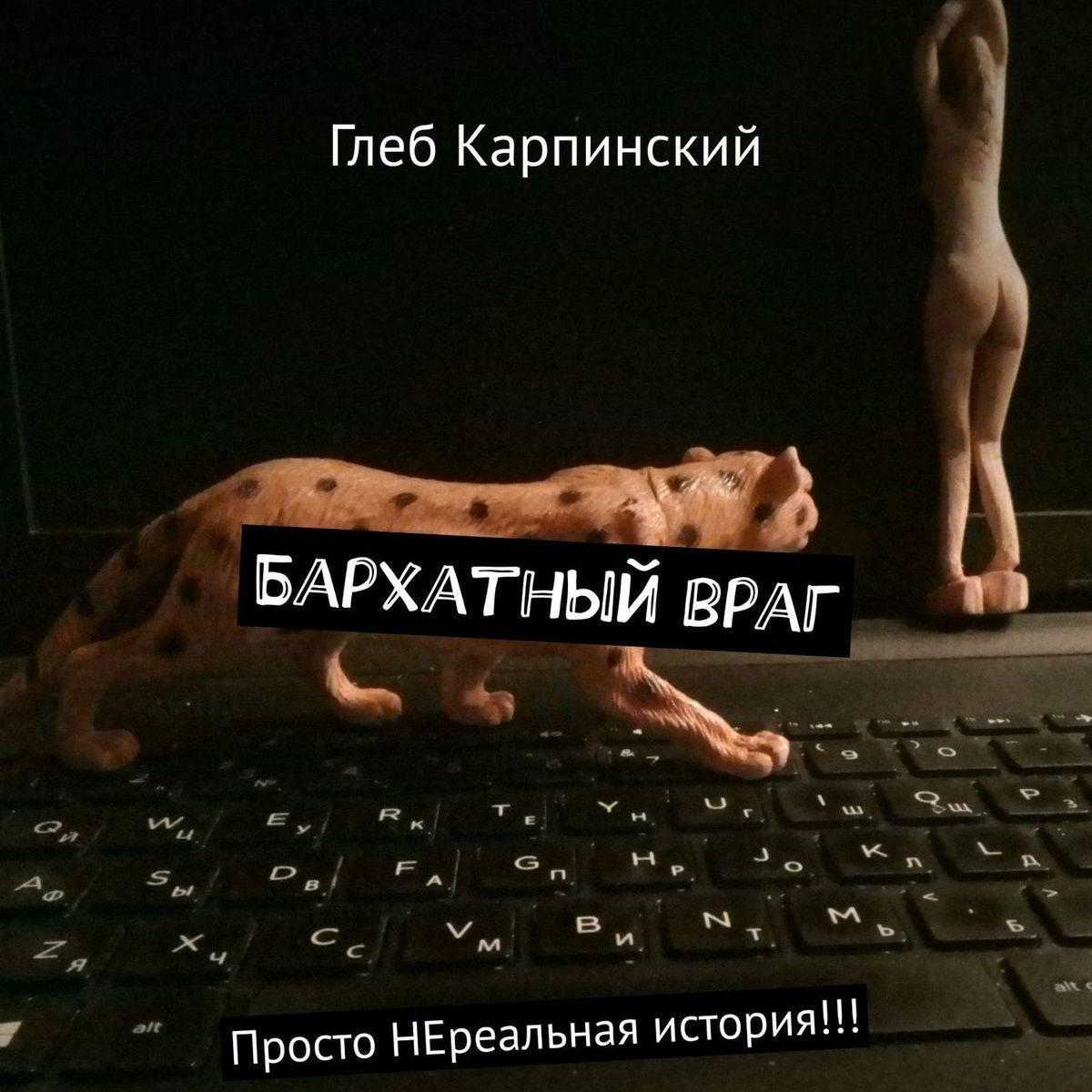 Обложка «Бархатныйвраг. Просто НЕреальная история!!!»