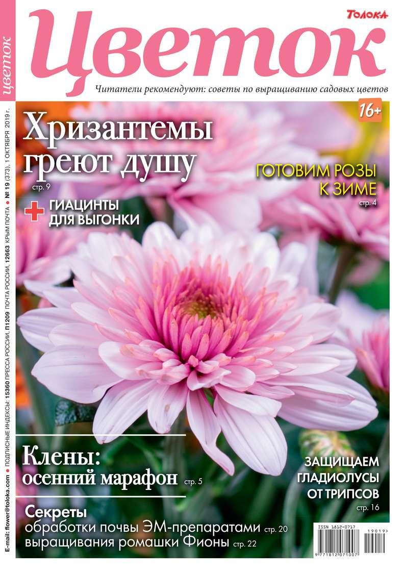 Обложка «Цветок 19-2019»