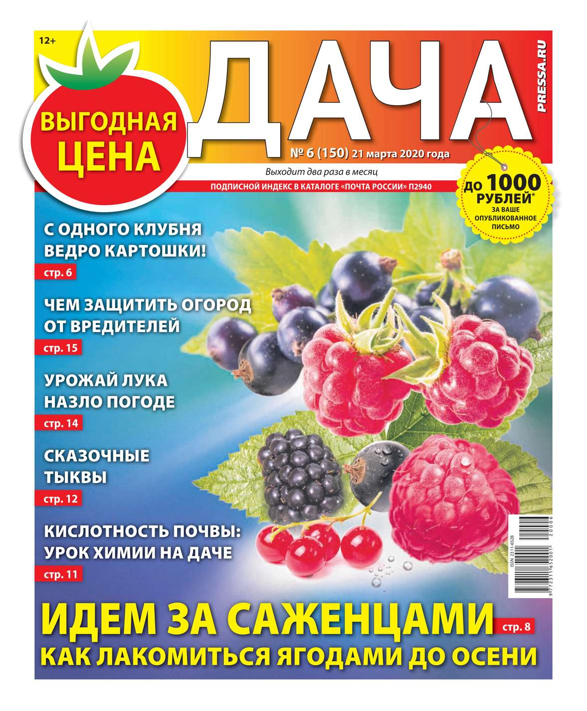 Дача Pressa.ru 06-2020