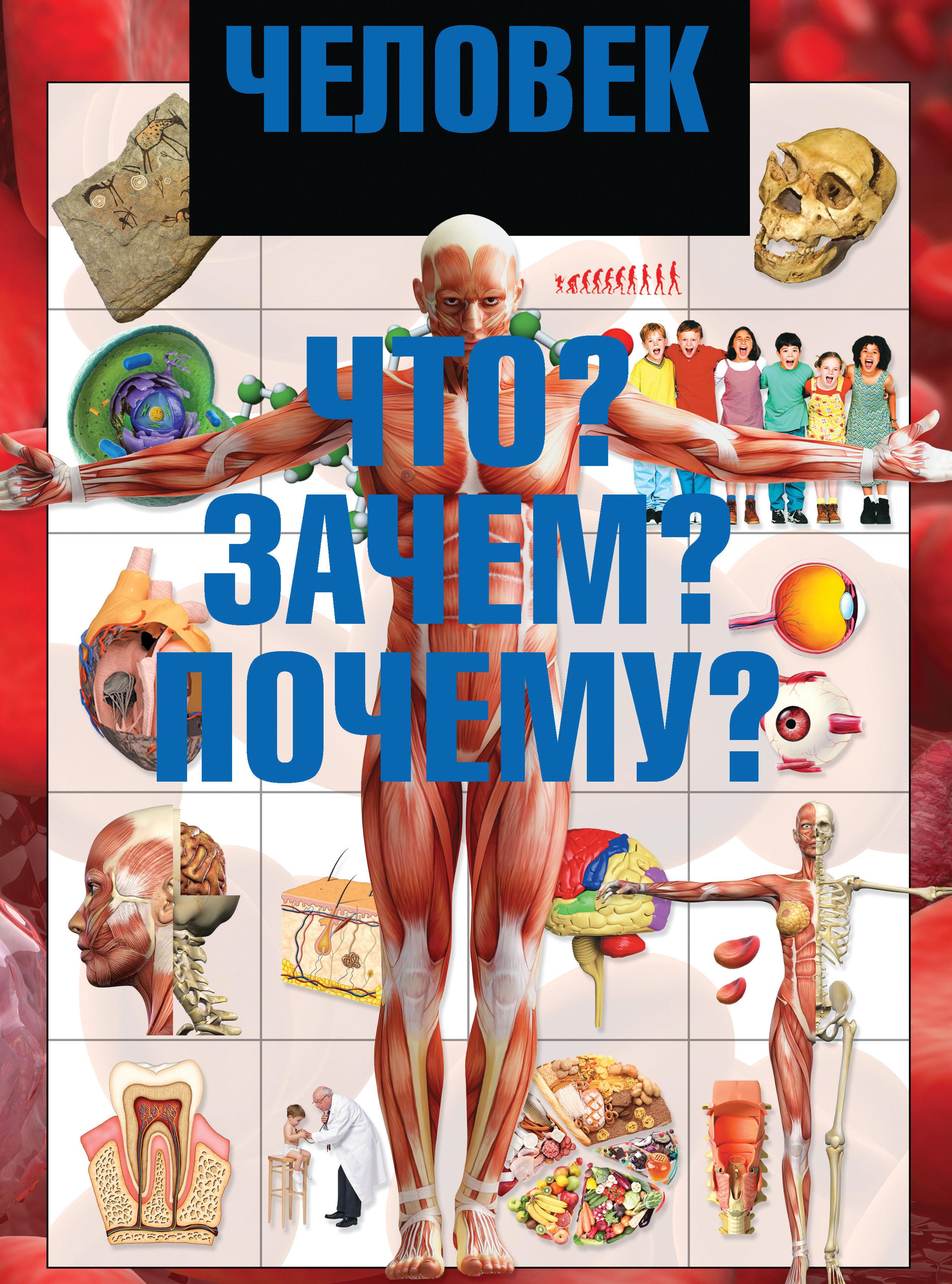 И. Е. Гусев Человек. Что? Зачем? Почему? цена 2017
