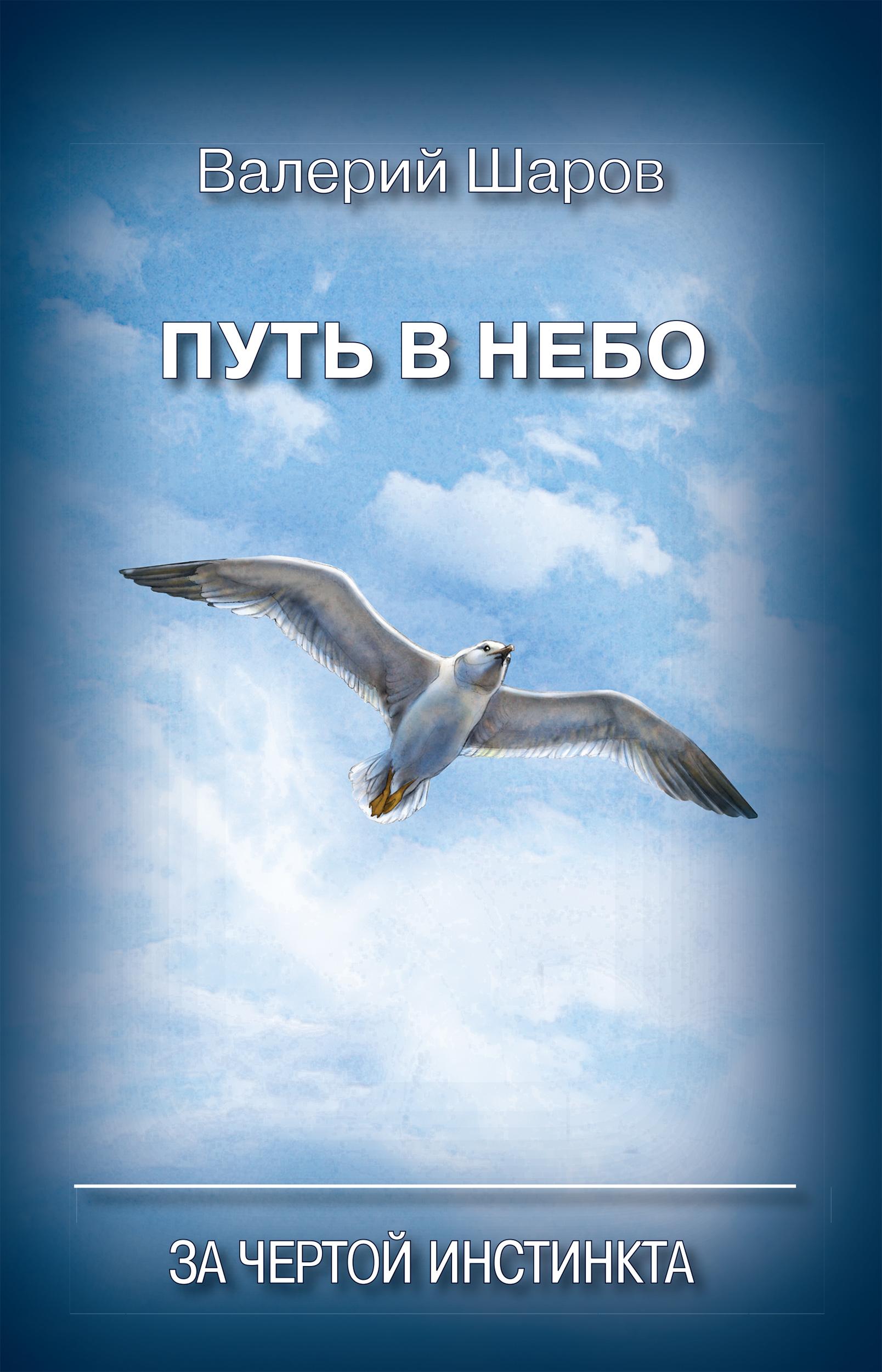 Валерий Шаров Путь в небо. За чертой инстинкта пентегов д парашюты шаг в небо