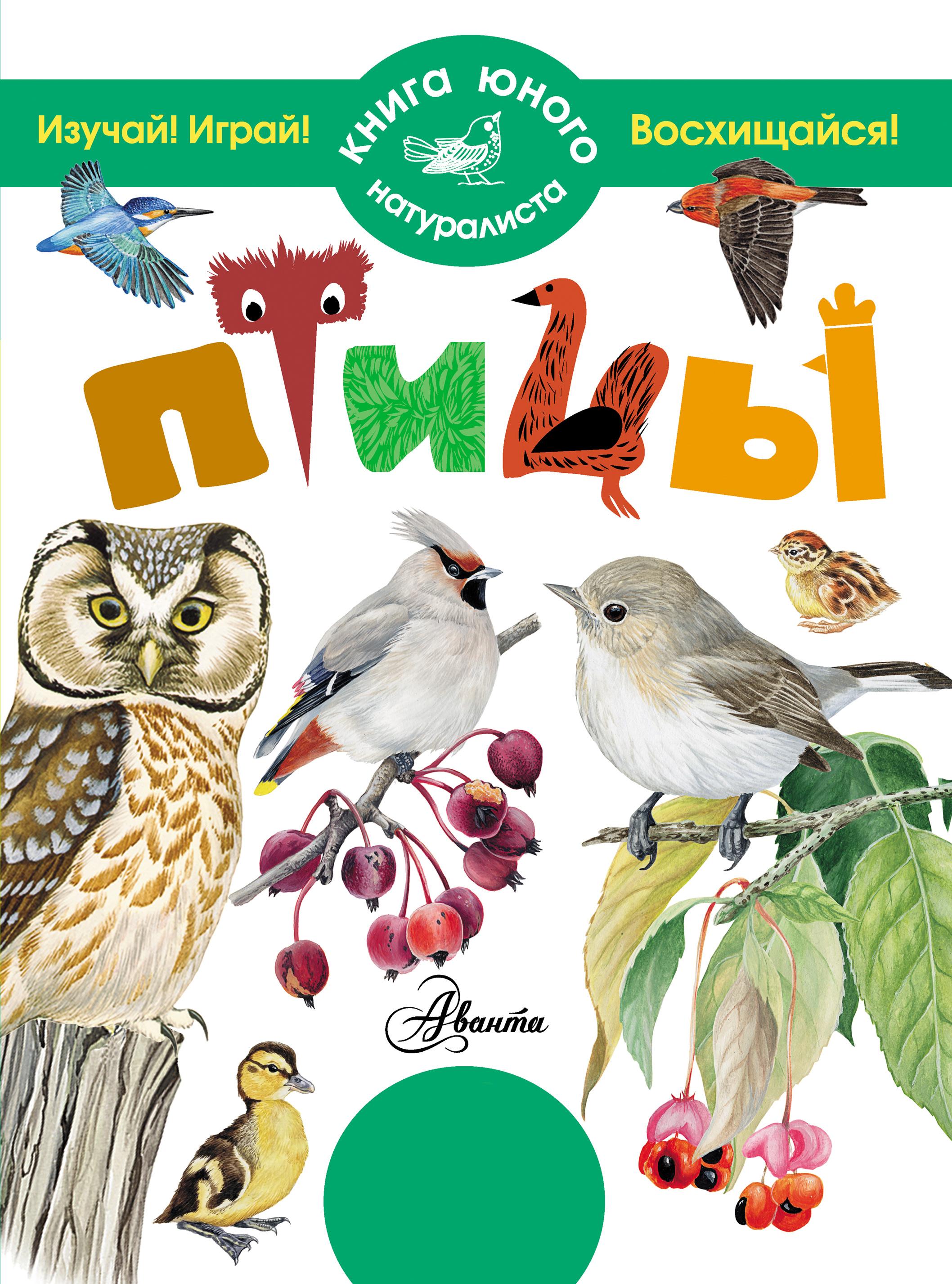 П. М. Волцит Птицы отсутствует птицы 60 птиц которых должен знать каждый