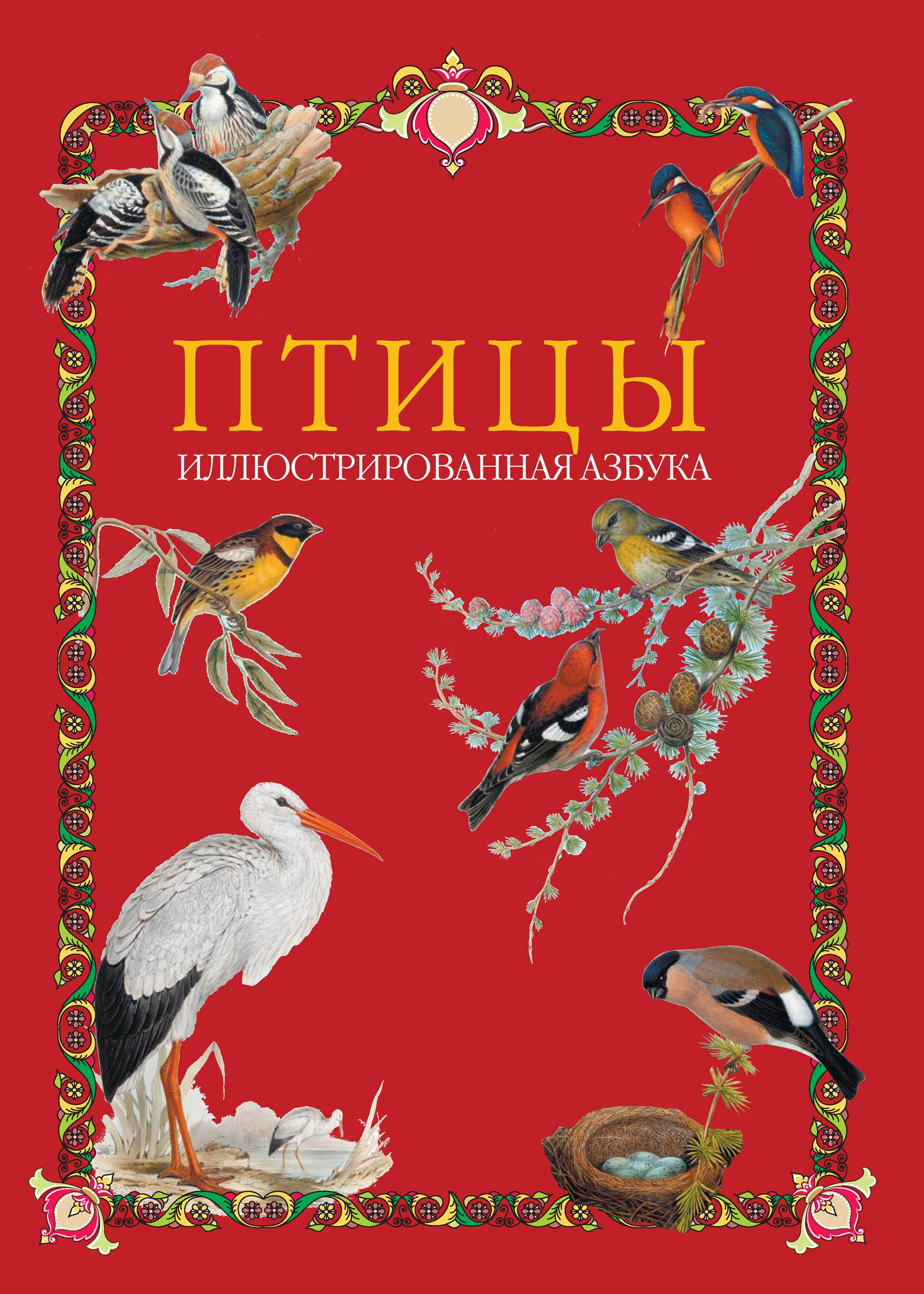 Отсутствует Птицы. Иллюстрированная азбука отсутствует птицы 60 птиц которых должен знать каждый