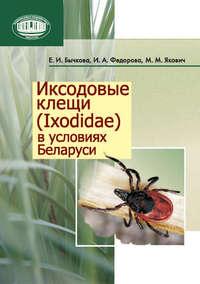 Обложка «Иксодовые клещи (Ixodidae) в условиях Беларуси»
