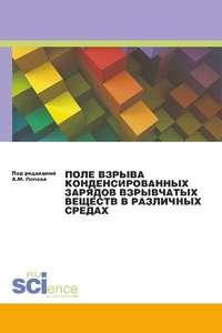Обложка «Поле взрыва конденсированных зарядов взрывчатых веществ в различных средах»