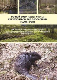 Обложка «Речной бобр (Castor fiber L.) как ключевой вид экосистемы малой реки (на примере Приокско-Террасного государственного биосферного природного заповедника)»