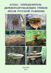 Обложка «Атлас-определитель дереворазрушающих грибов лесов Русской равнины»