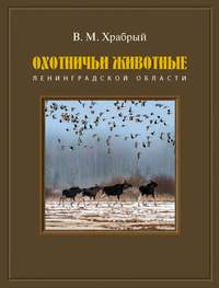 Обложка «Охотничьи животные Ленинградской области»