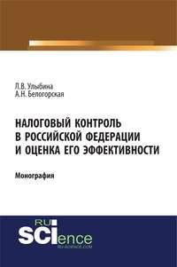 Обложка «Налоговый контроль в Российской Федерации и оценка его эффективности»