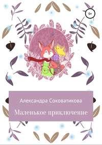 Обложка «Маленькое приключение»