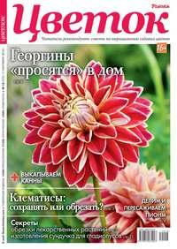 Обложка «Цветок 18-2019»