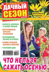 Обложка «Дачный сезон №08/2019»