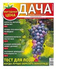 Обложка «Дача Pressa.ru 20-2019»
