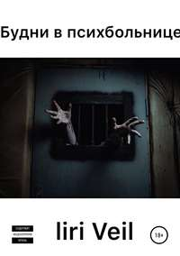 Обложка «Будни в психбольнице»