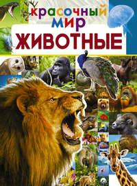 Обложка «Животные»