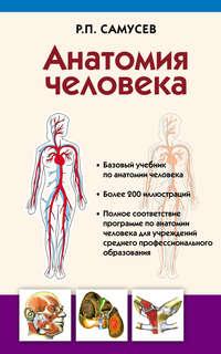 Обложка «Анатомия человека»