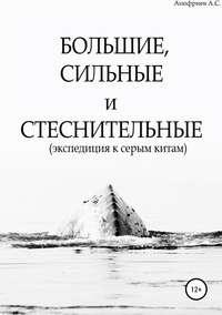 Обложка «Большие, сильные и стеснительные (экспедиция к серым китам)»