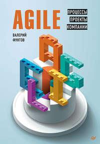 Обложка «Agile. Процессы, проекты, компании»