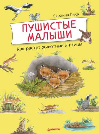 Обложка «Пушистые малыши. Как растут животные и птицы»