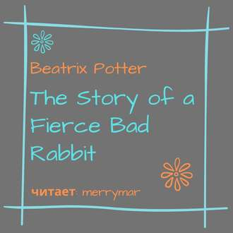 Обложка «The Story of a Fierce Bad Rabbit»