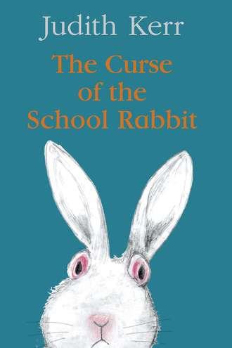 Обложка «The Curse of the School Rabbit»