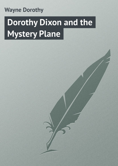 Wayne Dorothy Dorothy Dixon and the Mystery Plane цена 2017