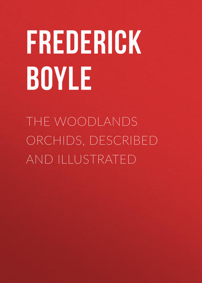Boyle Frederick The Woodlands Orchids, Described and Illustrated boyle frederick the woodlands orchids described and illustrated