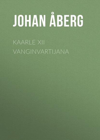 Åberg Johan Olof Kaarle XII vanginvartijana olof bjorner olof s files a bob dylan performance guide volume 6 1989 1990