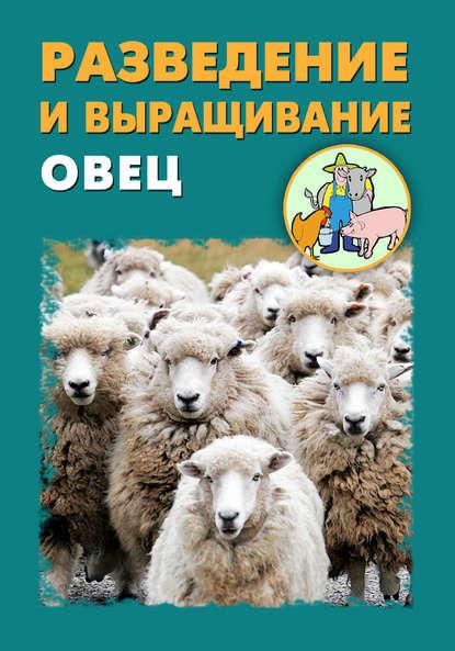 Илья Мельников Разведение и выращивание овец